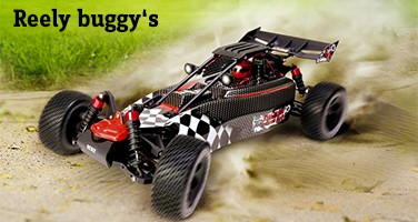 Reely buggy